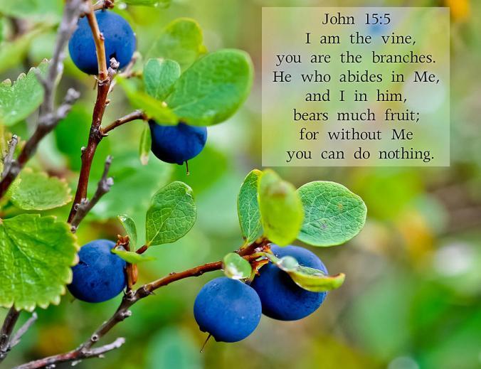 john-chapter-15-verse-5-arlene-nanouk